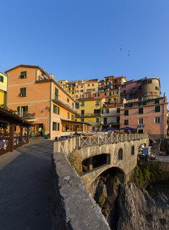 Italy, Liguria, Cinque Terre, Manarola - AM001685