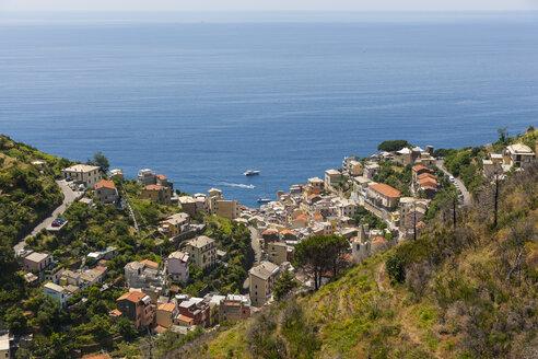 Italy, Liguria, Cinque Terre, Riomaggiore - AMF001729
