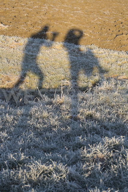 Shades of two women on frozen fields - SARF000210