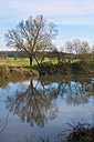 Germany, Hesse, Limburg, tree and water reflections at Lahn river - MHF000271