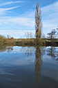 Germany, Hesse, Limburg, tree and water reflections at Lahn river - MHF000269