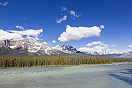 Canada, Alberta, Jasper National Park, Banff National Park, Icefields Parkway, Athabasca River - FOF005661