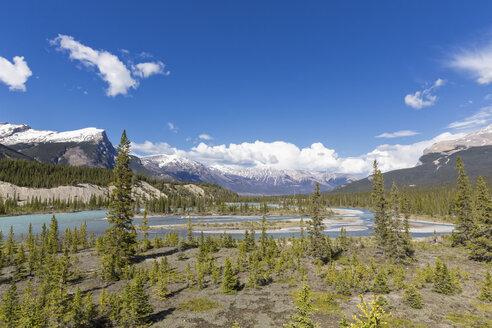 Canada, Alberta, Jasper National Park, Banff National Park, Icefields Parkway, Saskatchewan River - FOF005670