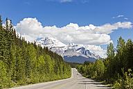 Canada, Alberta, Jasper National Park, Banff National Park, Icefields Parkway, Mount Wilson - FO005671