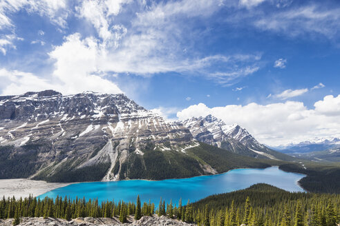 Canada, Alberta, Banff National Park, Peyto Lake seen from Bow Summit - FO005722