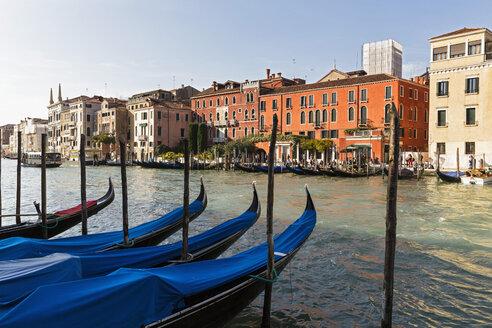 Italy, Venice, Gondolas on Canale Grande - FOF005796