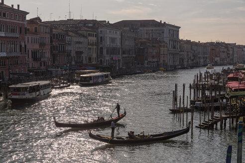 Italy, Venice, Gondolas on Canale Grande - FO005800