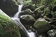 Japan, Yakushima, Waterfall in the rainforest - FL000372