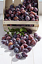 Wooden box with plums on wooden table - CSF020723