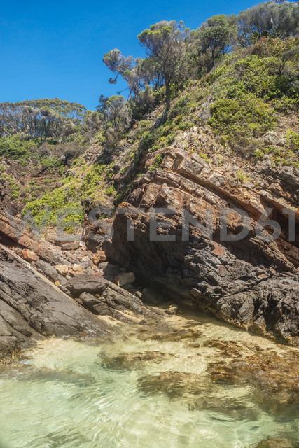 Australia, Seal Rocks, rocks, ocean and trees - FBF000184