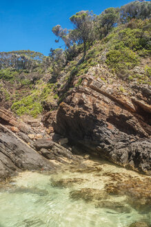 Australia, Seal Rocks, rocks, ocean and trees - FBF000184