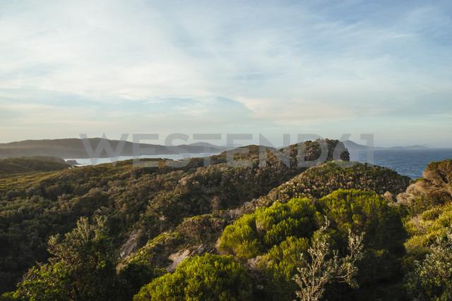 Australia, Seal Rocks, coast - FBF000194