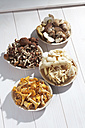 Fresh mushrooms, Agrocybe aegerita, Golden Oyster Mushrooms, Chanterelles and Ceps on wooden table - CSF020748