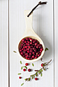 Wooden spoon with cranberries (Vaccinium vitis-idaea), twig and leaves on white wooden table - CSF020795