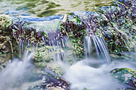 Italy, Tuscany, Val d'Orcia, Bagni San Filippo, Hot spring at Fosso Bianco - MJF000745