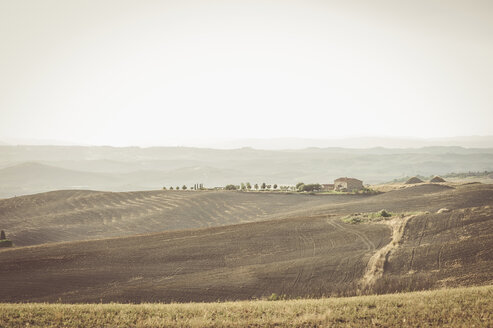Italy, Tuscany, Val d'Orcia, Rolling landscape - MJF000828