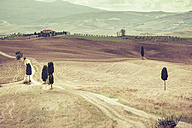 Italy, Tuscany, Val d'Orcia, Rolling landscape at Siena - MJF000839