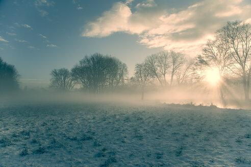 Germany, Bavaria, Landshut, winter landscape with morning sun - SAR000216