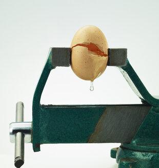 Broken egg under pressure in bench vice - AKF000308