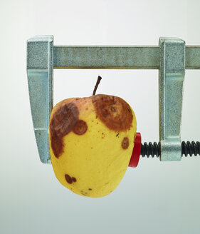 Decaying apple under pressure in bar clamp - AKF000313