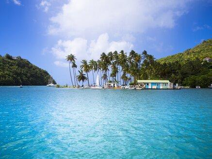 Caribbean, Antilles, Lesser Antilles, Saint Lucia, Marigot Bay - AMF001778
