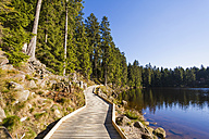 Germany, Baden-Wuerttemberg, Black Forest, Northern Black Forest, wooden boardwalk at Mummelsee - WDF002253