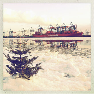 Christmas tree in Elbeis on the Elbe, container harbor in the background, oevengoenne, Hamburg, Germany - SE000525