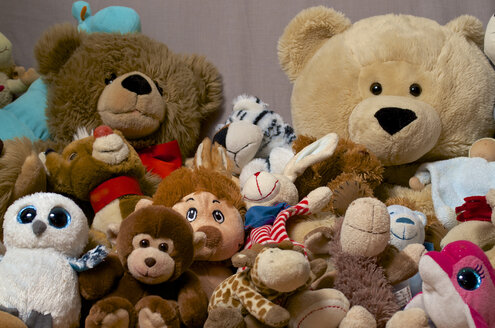 Collection of soft toys, studio shot - MHF000274