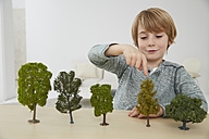 Germany, Boy sitting at table with tree models, environmental conservation - FSF000112