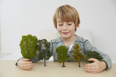 Germany, Boy sitting at table with tree models, environmental conservation - FSF000106