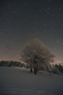 Germany, Baden-Wuerttemberg, Feldberg, winter landscape by night - PAF000359