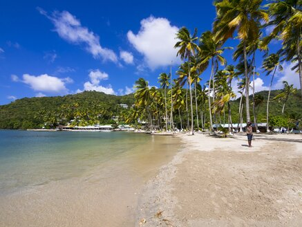 Caribbean, Saint Lucia, Marigot Bay, - AMF001793