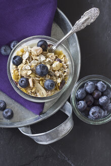 Breakfast bowl of cereals with blueberry and yogurt - YFF000025