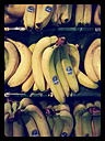 Bananas (Musa), Supermarket, Germany - CS020833