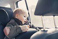 Germany, Little boy sitting in back-seat car seat - MFF000888