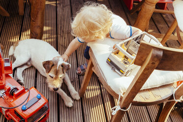 Little boy playing with Jack Russel terrier  and vehicle toys, elevated view - MF000879