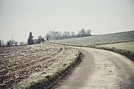 Germany, Baden-Wuerttemberg, Lienzingen, field path in winter - SBDF000591