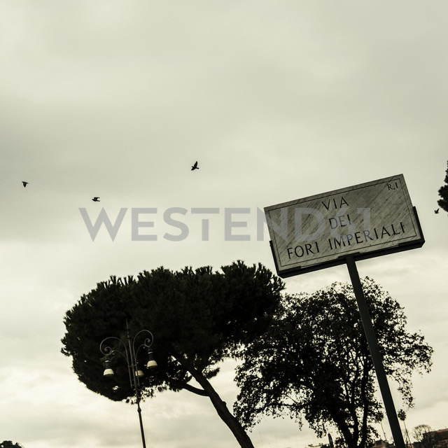 Italy, Rome, Flying pidgeons over street sign - KA000109 - blauphoton/Westend61