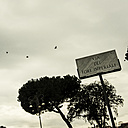 Italy, Rome, Flying pidgeons over street sign - KA000109