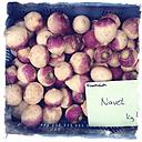 Germany, Baden-Wuerttemberg, Tuebingen, weekly market, Turnip Beet - LVF000637