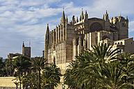 Spain, Majorca, Palma, Cathedral La Seu - THAF000067