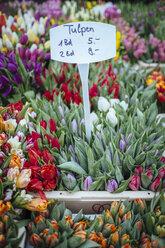 Germany, Baden-Wuerttemberg, Freiburg, market, - ELF000842