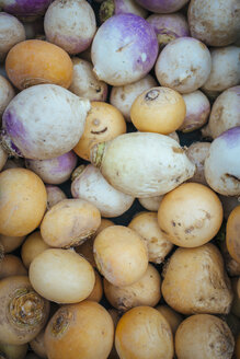 Germany, Baden-Wuerttemberg, Freiburg, vegetable market, Rutabagas (Brassica napus subsp. rapifera) - ELF000848