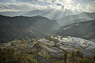 China, Yunnan, Yuanyang, Rice terraces - JBAF000088