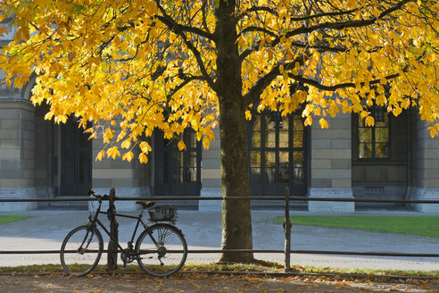 Germany, Bavaria, Munich, near Odeonsplatz, at Hofgarten, in autumn, bicycle parked - LAF000572