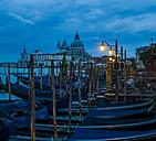 Italy, Venice, Gondolas and church Santa Maria della Salute - EJWF000276