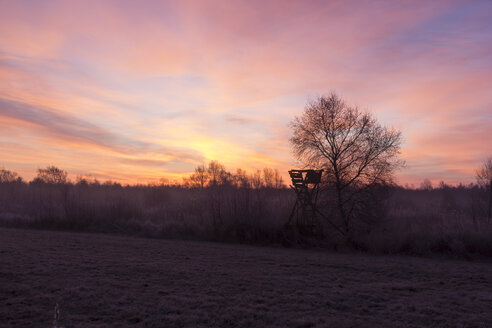 Germany. Lower Saxony, Sunrise, deer stand, misty - SJF000090