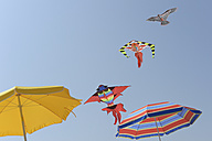 Three kites and two sunshades in front of blue sky - CRF002566