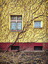 house facade with wine, Berlin, Germany - FBF000242