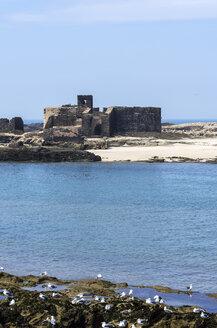Morocco, Essaouira, Kasbah, fortress at the coast - THAF000107